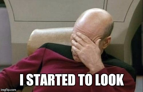 Captain Picard Facepalm Meme | I STARTED TO LOOK | image tagged in memes,captain picard facepalm | made w/ Imgflip meme maker
