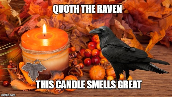 QUOTH THE RAVEN THIS CANDLE SMELLS GREAT | image tagged in edgar allan poe,the raven,pumpkin,pumpkin spice,candle,aroma therapy | made w/ Imgflip meme maker