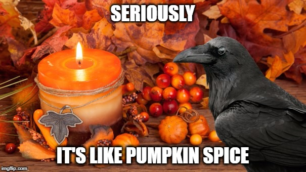 SERIOUSLY IT'S LIKE PUMPKIN SPICE | made w/ Imgflip meme maker