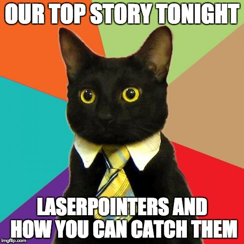6:00 meowsman | OUR TOP STORY TONIGHT LASERPOINTERS AND HOW YOU CAN CATCH THEM | image tagged in memes,business cat | made w/ Imgflip meme maker
