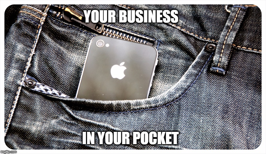 business in pocket | YOUR BUSINESS IN YOUR POCKET | image tagged in business cat | made w/ Imgflip meme maker