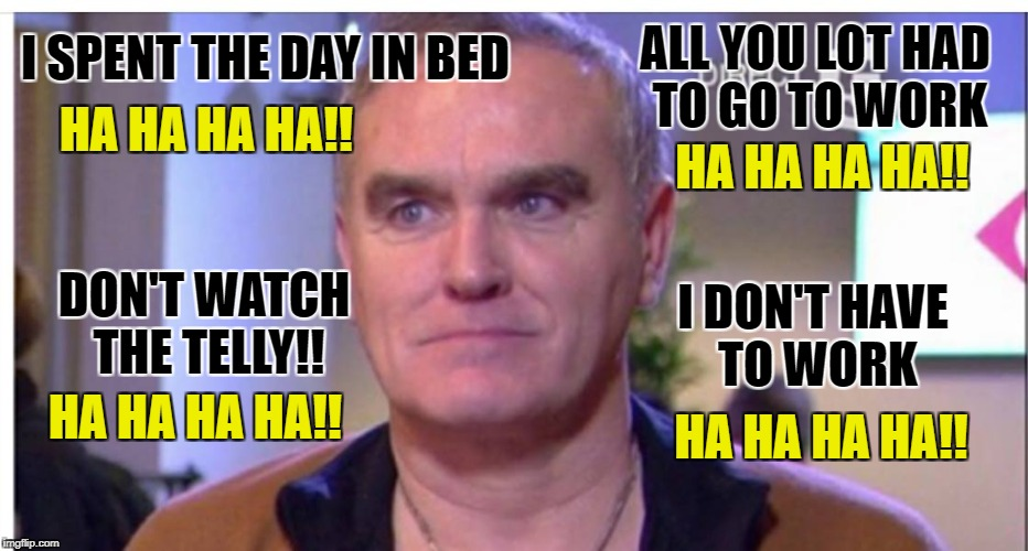 Its a hard life for Morrisey...  | I SPENT THE DAY IN BED HA HA HA HA!! ALL YOU LOT HAD TO GO TO WORK HA HA HA HA!! DON'T WATCH THE TELLY!! I DON'T HAVE TO WORK HA HA HA HA!!  | image tagged in morrissey,depression sadness hurt pain anxiety,depression,depressed cat | made w/ Imgflip meme maker