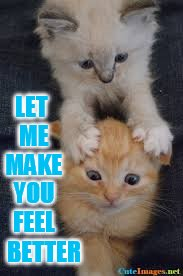 Need to Feel Better? | LET ME MAKE YOU FEEL BETTER | image tagged in memes,cute cats,massage,make,you,feel good | made w/ Imgflip meme maker