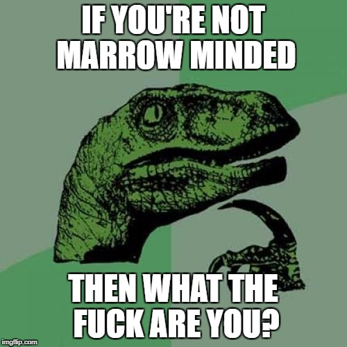 Philosoraptor Meme | IF YOU'RE NOT MARROW MINDED THEN WHAT THE F**K ARE YOU? | image tagged in memes,philosoraptor | made w/ Imgflip meme maker