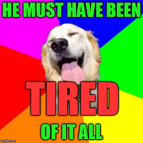 Anti Pun Dog | HE MUST HAVE BEEN OF IT ALL TIRED | image tagged in anti pun dog | made w/ Imgflip meme maker