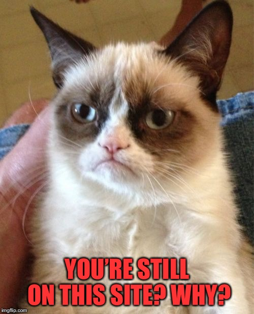 Depressing Meme Week -A neversaymemes event | YOU'RE STILL ON THIS SITE? WHY? | image tagged in memes,grumpy cat,depressing meme week,neversaymemes,go away,shooo | made w/ Imgflip meme maker