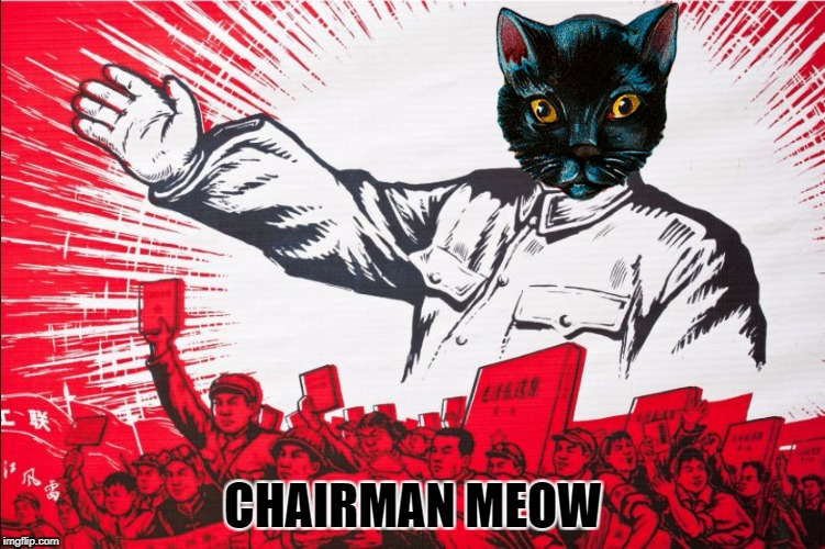Chairman Mao | CHAIRMAN MEOW | image tagged in chairman mao propoganda poster meme,memes,cats,china,communism,politics | made w/ Imgflip meme maker