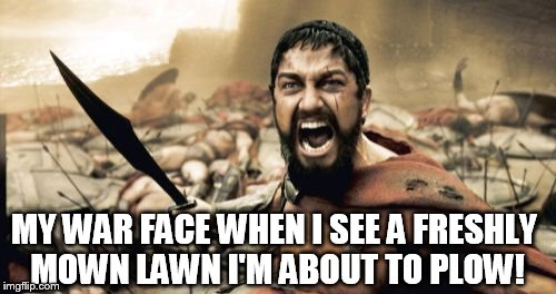 Sparta Leonidas Meme | MY WAR FACE WHEN I SEE A FRESHLY MOWN LAWN I'M ABOUT TO PLOW! | image tagged in memes,sparta leonidas | made w/ Imgflip meme maker