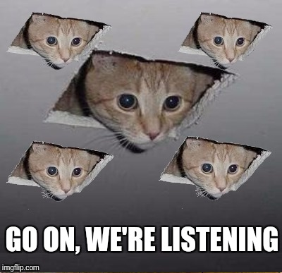There's more than one up there! | GO ON, WE'RE LISTENING | image tagged in ceiling cat,cats | made w/ Imgflip meme maker