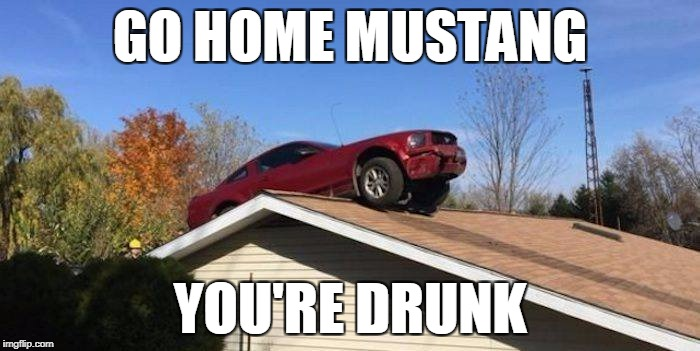 drunkstang | GO HOME MUSTANG YOU'RE DRUNK | image tagged in drunkstang,drunk,mustang | made w/ Imgflip meme maker