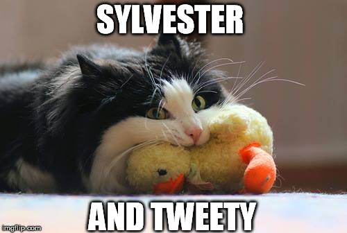 SYLVESTER AND TWEETY | made w/ Imgflip meme maker