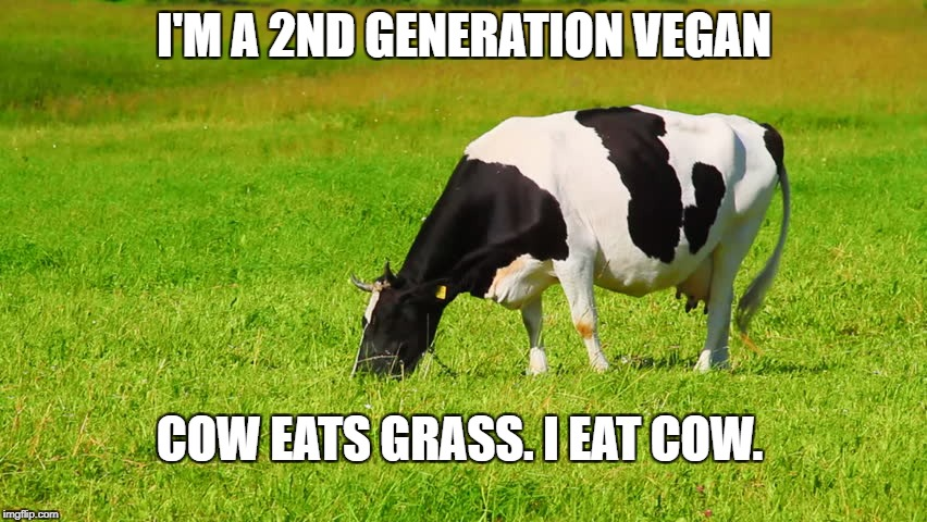 I love the taste of grass over an open fire. | I'M A 2ND GENERATION VEGAN COW EATS GRASS. I EAT COW. | image tagged in vegan,cow | made w/ Imgflip meme maker