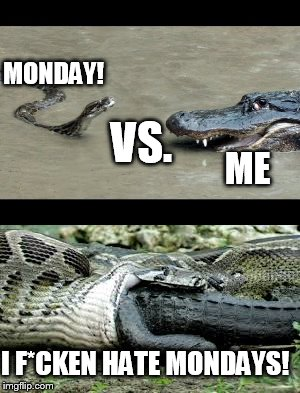 Monday Vs. ME Python/Alligator Depressing Meme Week Oct 11-18 A NeverSayMemes Event | MONDAY! ME VS. I F*CKEN HATE MONDAYS! | image tagged in monday sucks,when does it end,depressing meme week | made w/ Imgflip meme maker