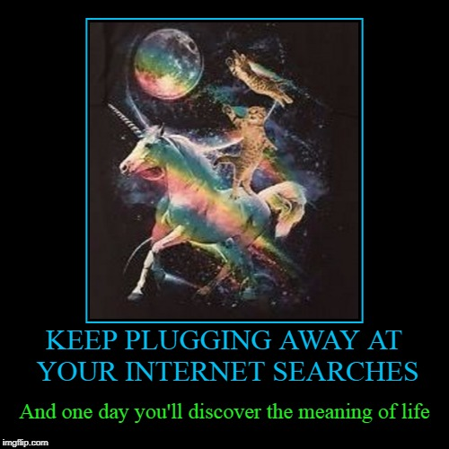 you knew it had to involve unicorns didn't you? | KEEP PLUGGING AWAY AT YOUR INTERNET SEARCHES | And one day you'll discover the meaning of life | image tagged in funny,demotivationals,unicorn,cats,the meaning of life | made w/ Imgflip demotivational maker