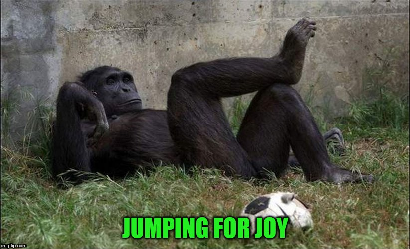 JUMPING FOR JOY | made w/ Imgflip meme maker