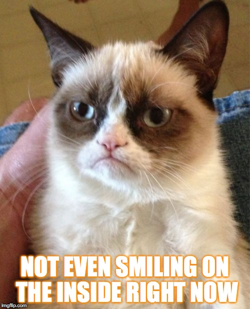 Grumpy Cat Meme | NOT EVEN SMILING ON THE INSIDE RIGHT NOW | image tagged in memes,grumpy cat | made w/ Imgflip meme maker