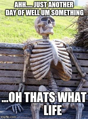 Waiting Skeleton Meme | AHH..... JUST ANOTHER DAY OF WELL UM SOMETHING ...OH THATS WHAT        LIFE | image tagged in memes,waiting skeleton | made w/ Imgflip meme maker