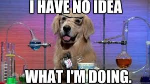 Me during class | image tagged in dogs | made w/ Imgflip meme maker