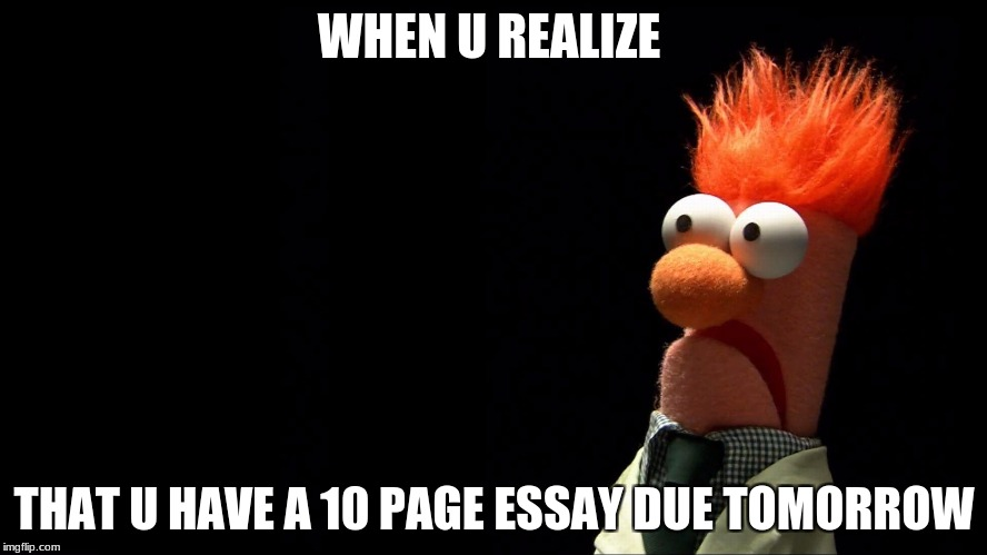 i hate school  | WHEN U REALIZE THAT U HAVE A 10 PAGE ESSAY DUE TOMORROW | image tagged in muppets | made w/ Imgflip meme maker