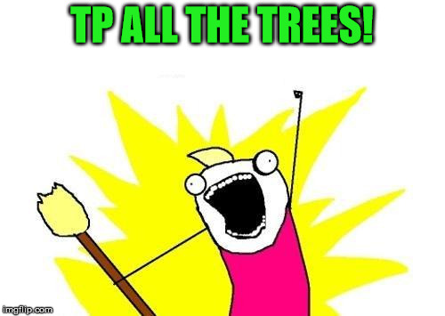 X All The Y Meme | TP ALL THE TREES! | image tagged in memes,x all the y | made w/ Imgflip meme maker