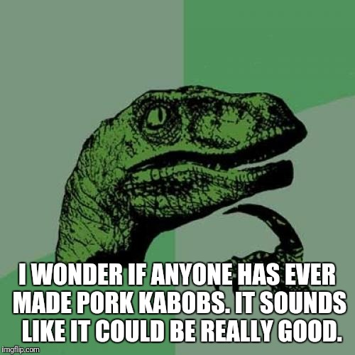 Philosoraptor Meme | I WONDER IF ANYONE HAS EVER MADE PORK KABOBS. IT SOUNDS  LIKE IT COULD BE REALLY GOOD. | image tagged in memes,philosoraptor | made w/ Imgflip meme maker
