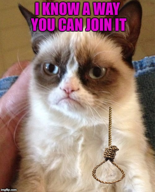 Grumpy Cat Meme | I KNOW A WAY YOU CAN JOIN IT | image tagged in memes,grumpy cat | made w/ Imgflip meme maker