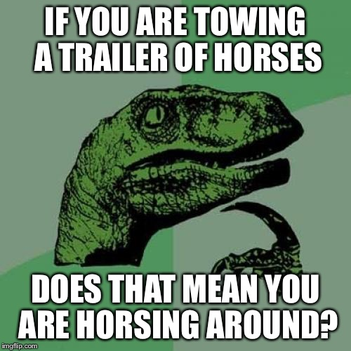 Philosoraptor Meme | IF YOU ARE TOWING A TRAILER OF HORSES DOES THAT MEAN YOU ARE HORSING AROUND? | image tagged in memes,philosoraptor | made w/ Imgflip meme maker