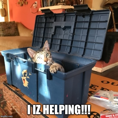 My Roommate's Cat Wants to Help With House Repairs | I IZ HELPING!!! | image tagged in funny cats,lolcats,lolcat,a helping hand,helping | made w/ Imgflip meme maker