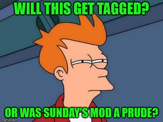 Futurama Fry Meme | WILL THIS GET TAGGED? OR WAS SUNDAY'S MOD A PRUDE? | image tagged in memes,futurama fry | made w/ Imgflip meme maker