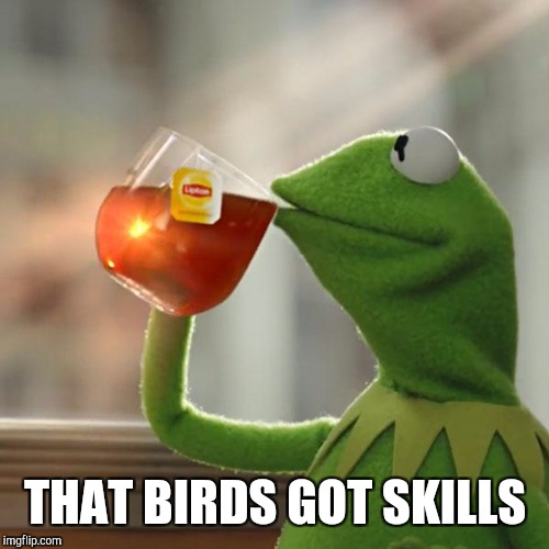 But Thats None Of My Business Meme | THAT BIRDS GOT SKILLS | image tagged in memes,but thats none of my business,kermit the frog | made w/ Imgflip meme maker