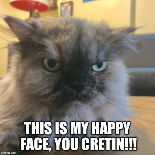 Neighbor's Cat Has A Good Smile! | THIS IS MY HAPPY FACE, YOU CRETIN!!! | image tagged in cat,grumpy cat,happy cat,funny cat memes,funny cat | made w/ Imgflip meme maker
