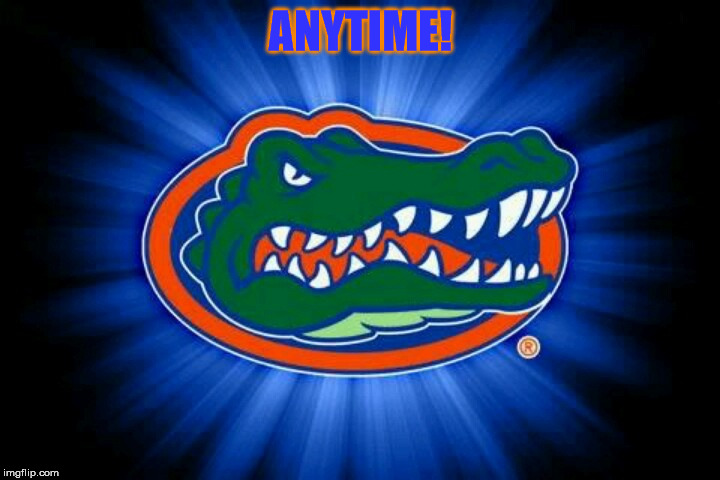 Florida Gators Logo | ANYTIME! | image tagged in florida gators logo | made w/ Imgflip meme maker