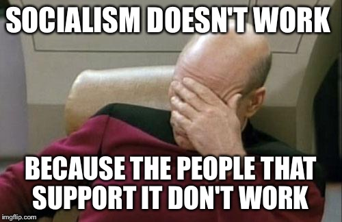 Captain Picard Facepalm Meme | SOCIALISM DOESN'T WORK BECAUSE THE PEOPLE THAT SUPPORT IT DON'T WORK | image tagged in memes,captain picard facepalm | made w/ Imgflip meme maker