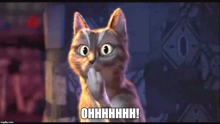 OHHHHHHH! | image tagged in oooh cat | made w/ Imgflip meme maker