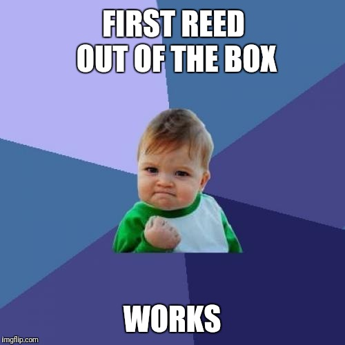 Success Kid Meme | FIRST REED OUT OF THE BOX WORKS | image tagged in memes,success kid | made w/ Imgflip meme maker