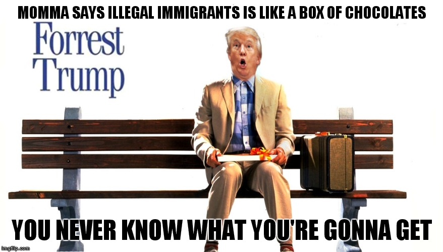 He fired Lt. Dan! | MOMMA SAYS ILLEGAL IMMIGRANTS IS LIKE A BOX OF CHOCOLATES YOU NEVER KNOW WHAT YOU'RE GONNA GET | image tagged in donald trump,forrest gump box of chocolates | made w/ Imgflip meme maker