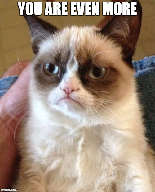 Grumpy Cat Meme | YOU ARE EVEN MORE | image tagged in memes,grumpy cat | made w/ Imgflip meme maker