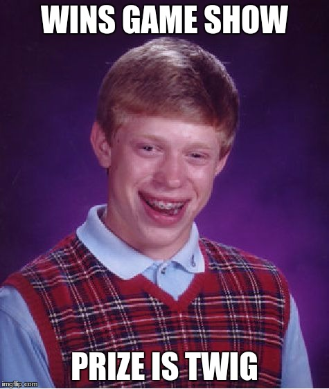 Bad Luck Brian Meme | WINS GAME SHOW PRIZE IS TWIG | image tagged in memes,bad luck brian | made w/ Imgflip meme maker