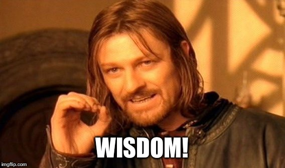 One Does Not Simply Meme | WISDOM! | image tagged in memes,one does not simply | made w/ Imgflip meme maker