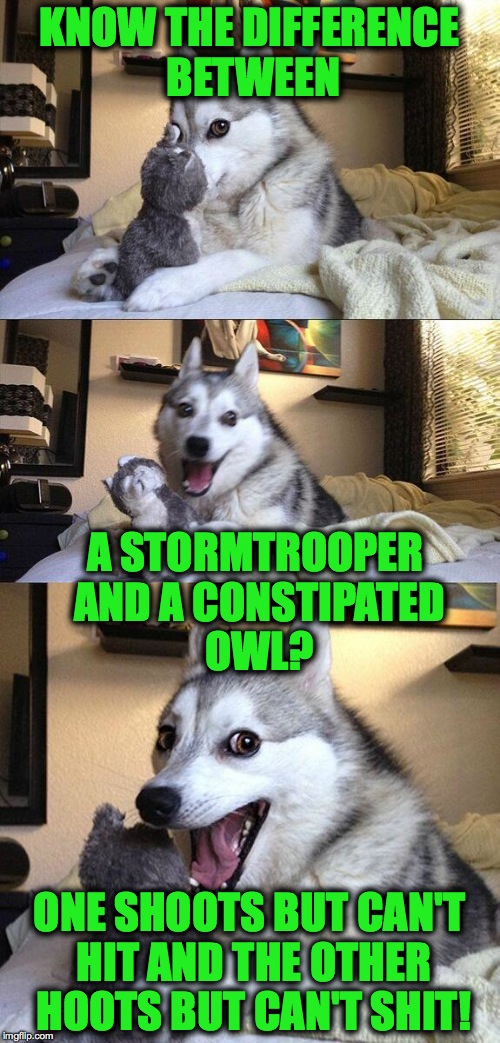 Star Wars..... duh-duh-dadada duh-duhhhh......... | KNOW THE DIFFERENCE BETWEEN ONE SHOOTS BUT CAN'T HIT AND THE OTHER HOOTS BUT CAN'T SHIT! A STORMTROOPER AND A CONSTIPATED OWL? | image tagged in wordplay | made w/ Imgflip meme maker