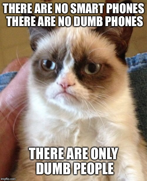Grumpy Cat Meme | THERE ARE NO SMART PHONES THERE ARE NO DUMB PHONES THERE ARE ONLY DUMB PEOPLE | image tagged in memes,grumpy cat | made w/ Imgflip meme maker