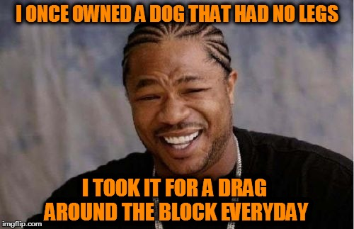 Yo Dawg Heard You Meme | I ONCE OWNED A DOG THAT HAD NO LEGS I TOOK IT FOR A DRAG AROUND THE BLOCK EVERYDAY | image tagged in memes,yo dawg heard you | made w/ Imgflip meme maker