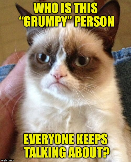 "Grumpy Cat Meme | WHO IS THIS ""GRUMPY"" PERSON EVERYONE KEEPS TALKING ABOUT? 