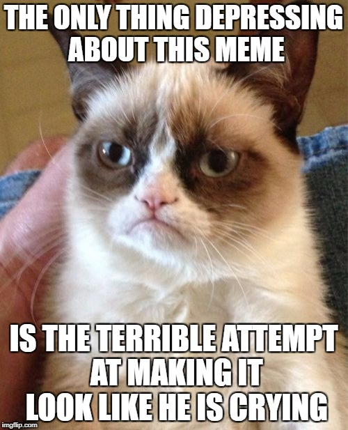 Grumpy Cat Meme | THE ONLY THING DEPRESSING ABOUT THIS MEME IS THE TERRIBLE ATTEMPT AT MAKING IT LOOK LIKE HE IS CRYING | image tagged in memes,grumpy cat | made w/ Imgflip meme maker