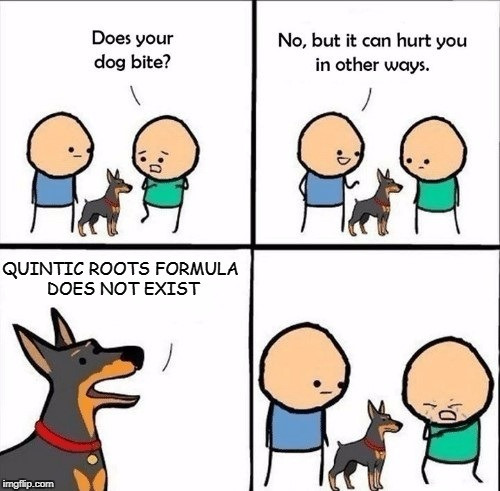does your dog bite | QUINTIC ROOTS FORMULA DOES NOT EXIST | image tagged in does your dog bite | made w/ Imgflip meme maker