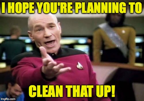 Picard Wtf Meme | I HOPE YOU'RE PLANNING TO CLEAN THAT UP! | image tagged in memes,picard wtf | made w/ Imgflip meme maker