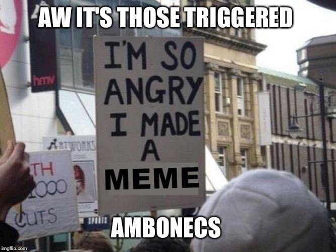 The Ambonecs Be At It Again | AW IT'S THOSE TRIGGERED AMBONECS | image tagged in the guys in front of me won't stop talking about drugs and music videos,hacky sack,chalifour fumbles it again,gunnar | made w/ Imgflip meme maker