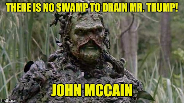 THERE IS NO SWAMP TO DRAIN MR. TRUMP! JOHN MCCAIN | image tagged in swamped | made w/ Imgflip meme maker