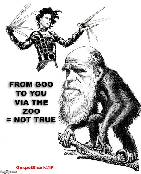 image tagged in monkey haircut,goo to you,via the zoo,evolution,darwinism,pseudoscience | made w/ Imgflip meme maker