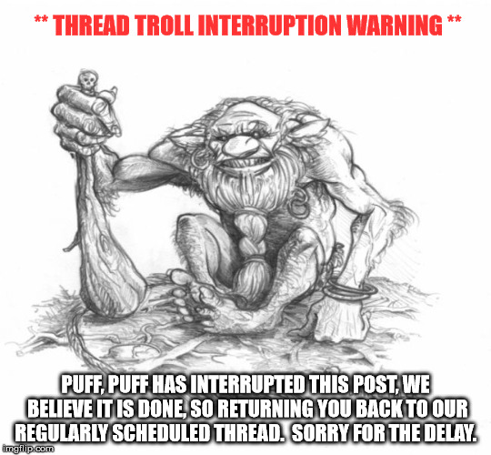 Troll Man | ** THREAD TROLL INTERRUPTION WARNING ** PUFF, PUFF HAS INTERRUPTED THIS POST, WE BELIEVE IT IS DONE, SO RETURNING YOU BACK TO OUR REGULARLY  | image tagged in troll | made w/ Imgflip meme maker